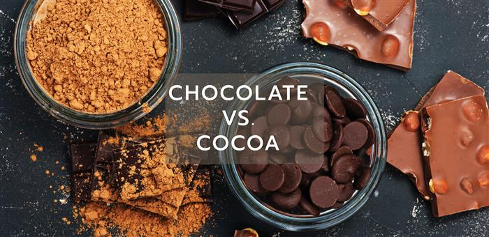 Chocolate vs. Cocoa